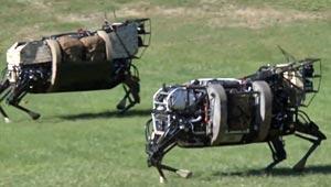 robotic-horse